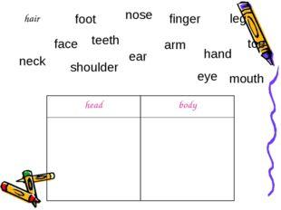 hair nose finger leg toe ear shoulder neck face teeth foot mouth arm eye hand