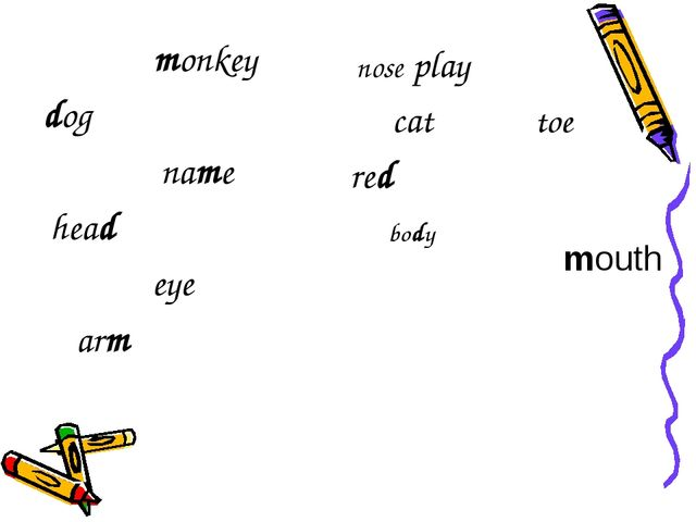 monkey dog name head eye arm nose play cat toe red body mouth