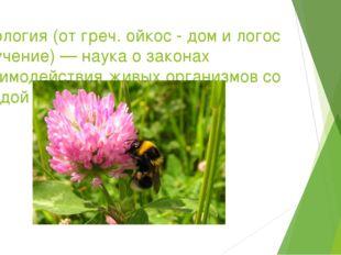 Экология (от греч. ойкос - дом и логос — учение) — наука о законах взаимодейс