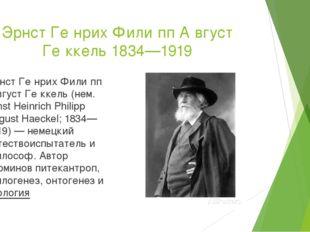 Эрнст Ге́нрих Фили́пп А́вгуст Ге́ккель 1834—1919 Эрнст Ге́нрих Фили́пп А́вгус