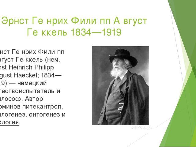 Эрнст Ге́нрих Фили́пп А́вгуст Ге́ккель 1834—1919 Эрнст Ге́нрих Фили́пп А́вгус...