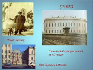 Гимназия, в которой учился А. П. Чехов …………………………………… УЧЁБА Чехов - доктор До