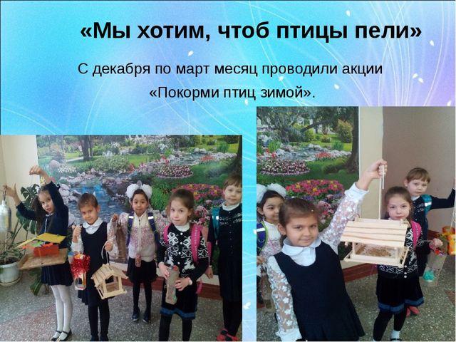 «Мы хотим, чтоб птицы пели» С декабря по март месяц проводили акции «Покорми...