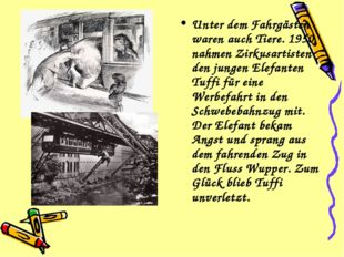 Unter dem Fahrgästen waren auch Tiere. 1950 nahmen Zirkusartisten den jungen