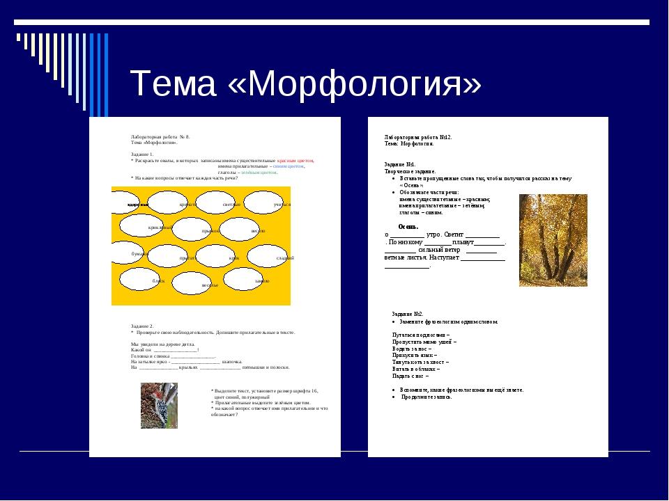 Тема «Морфология»