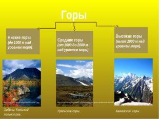 Горы Низкие горы (до 1000 м над уровнем моря). Высокие горы (выше 2000 м над