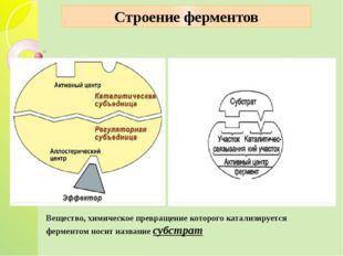 Строение ферментов Вещество, химическое превращение которого катализируется ф