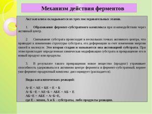 Акт катализа складывается из трех последовательных этапов.  1.Образов