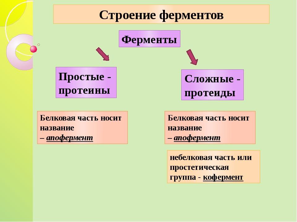 Строение ферментов Ферменты Простые - протеины Сложные - протеиды небелковая...
