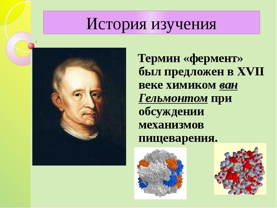 Термин «фермент» был предложен в XVII веке химиком ван Гельмонтом при обсужд...