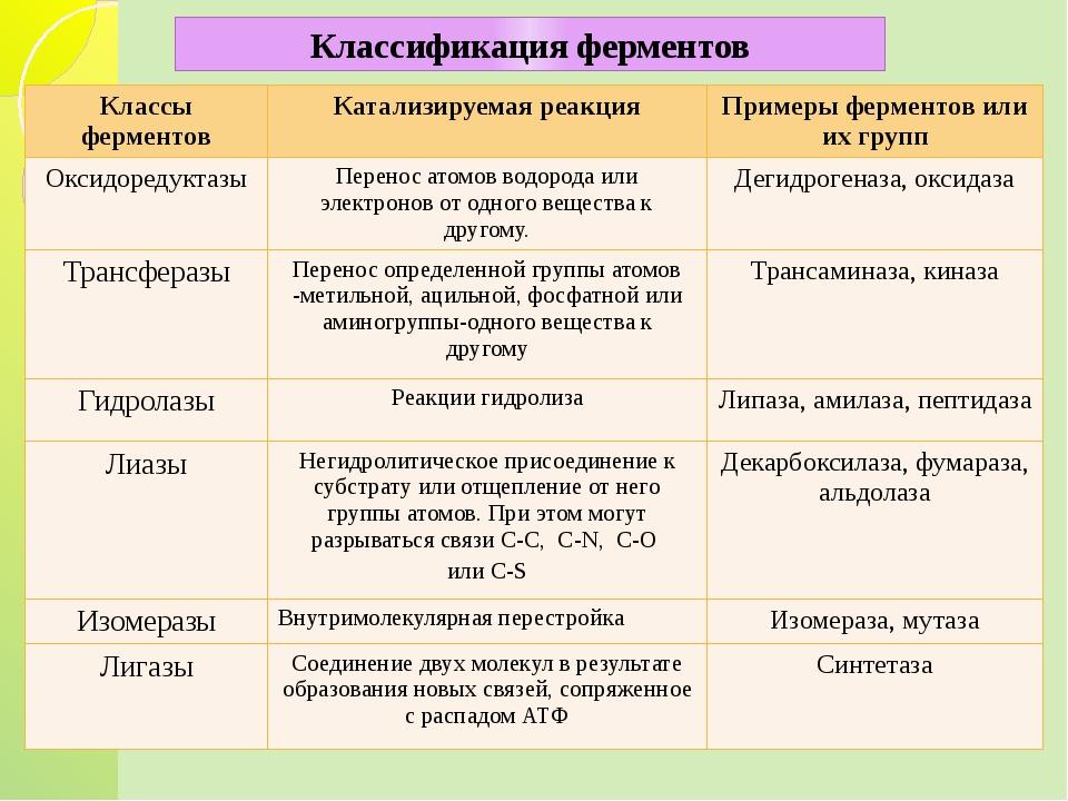 Классификация ферментов Классы ферментов Катализируемая реакция Примеры ферм...