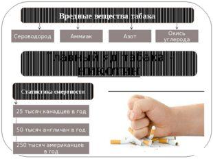 Вредные вещества табака Сероводород Аммиак Азот Окись углерода Главный яд таб