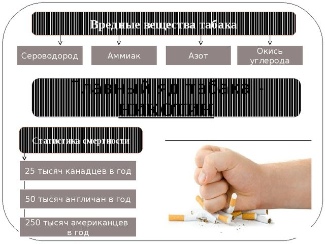 Вредные вещества табака Сероводород Аммиак Азот Окись углерода Главный яд таб...