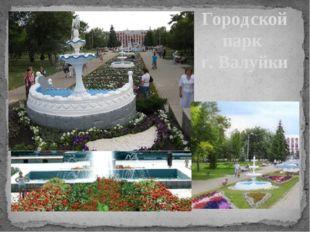 Городской парк г. Валуйки