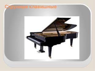 Струнные клавишные