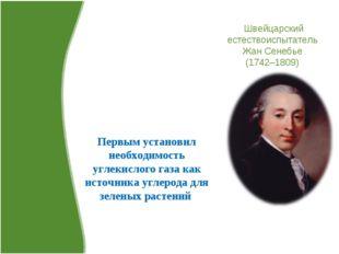 Швейцарский естествоиспытатель Жан Сенебье (1742–1809) Первым установил необх