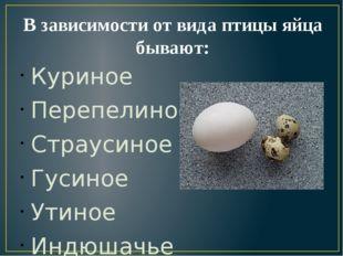 В зависимости от вида птицы яйца бывают: Куриное Перепелиное Страусиное Гусин