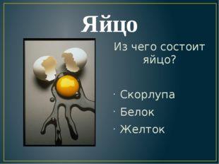 Яйцо Из чего состоит яйцо? Скорлупа Белок Желток