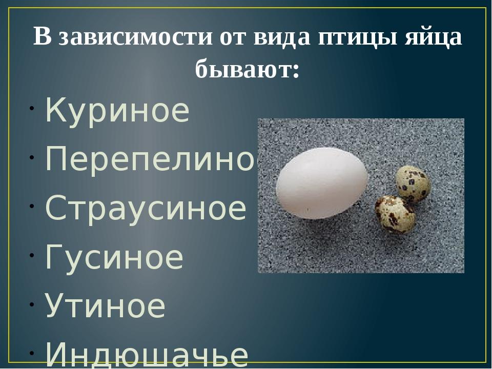 В зависимости от вида птицы яйца бывают: Куриное Перепелиное Страусиное Гусин...
