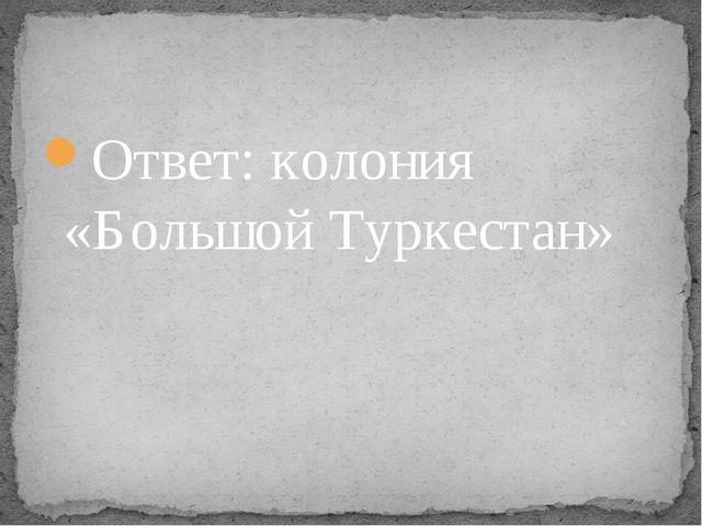 Ответ: колония «Большой Туркестан»