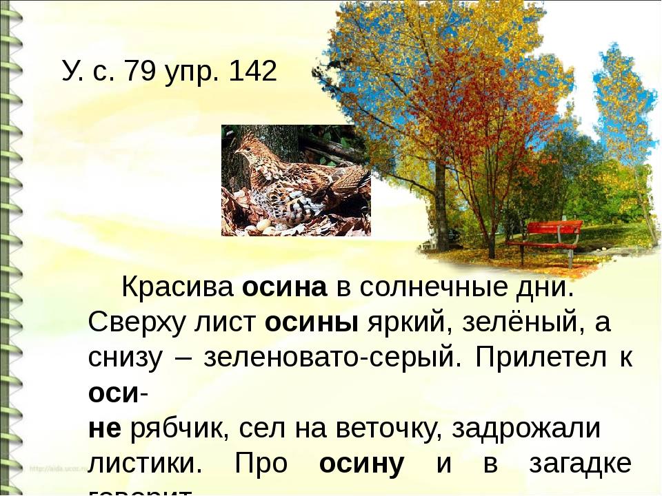 У. с. 79 упр. 142 Красива осина в солнечные дни. Сверху лист осины яркий, зе...