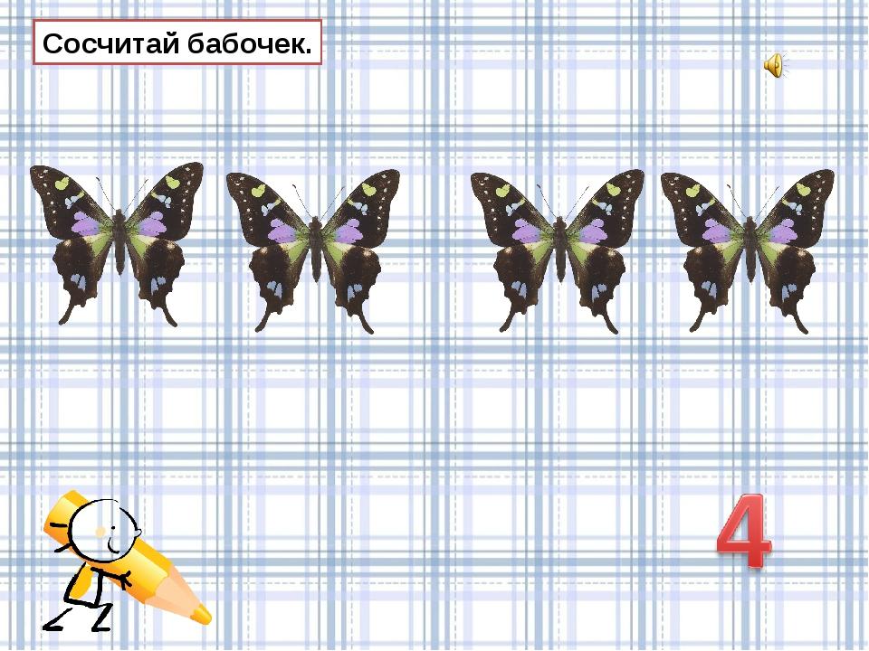 Сосчитай бабочек.