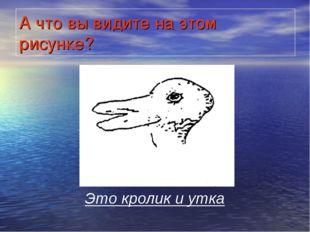 А что вы видите на этом рисунке? Это кролик и утка
