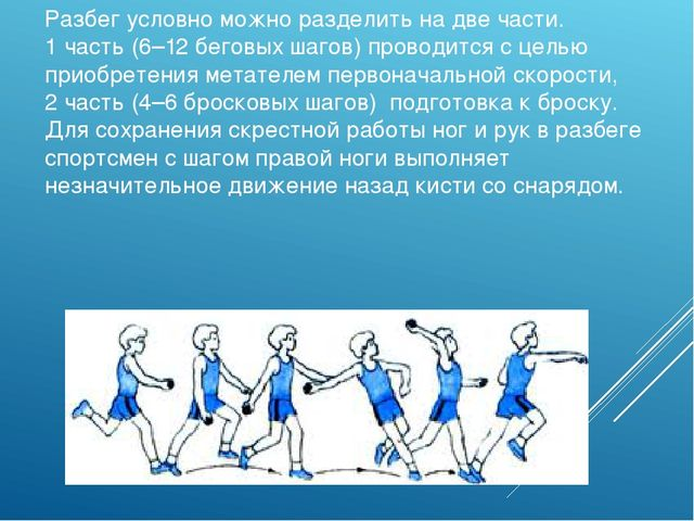 Разбег условно можно разделить на две части. 1 часть (6–12 беговых шагов) про...