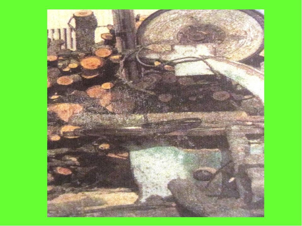 Ашық тұқымды өсімдіктер жыл сайын азаюда. Құрылыс материалдарын алу мақсатынд...