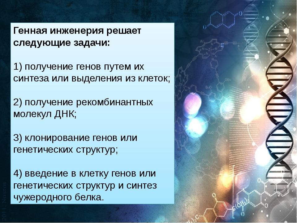Генная инженерия решает следующие задачи: 1) получение генов путем их синтеза...