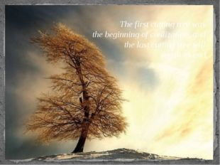 The first cutting tree was the beginning of civilization, and the last cuttin