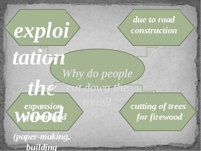 Why do people cut down the trees? exploitation the wood (paper-making, build...