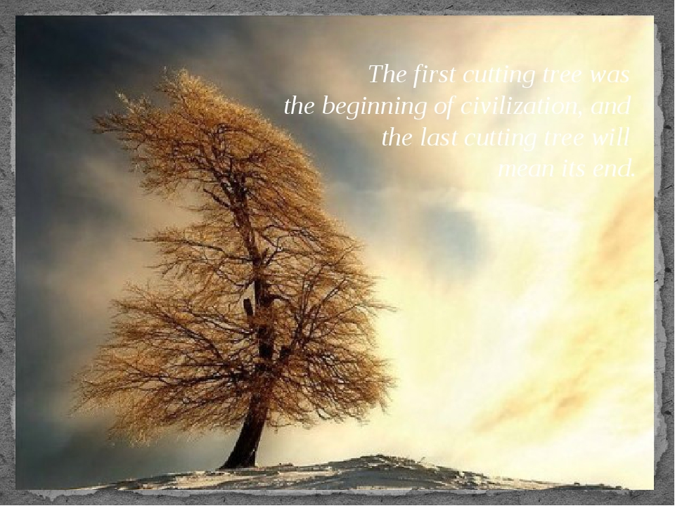 The first cutting tree was the beginning of civilization, and the last cuttin...