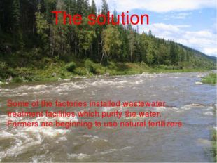 The solution Some of the factories installed wastewater treatment facilities