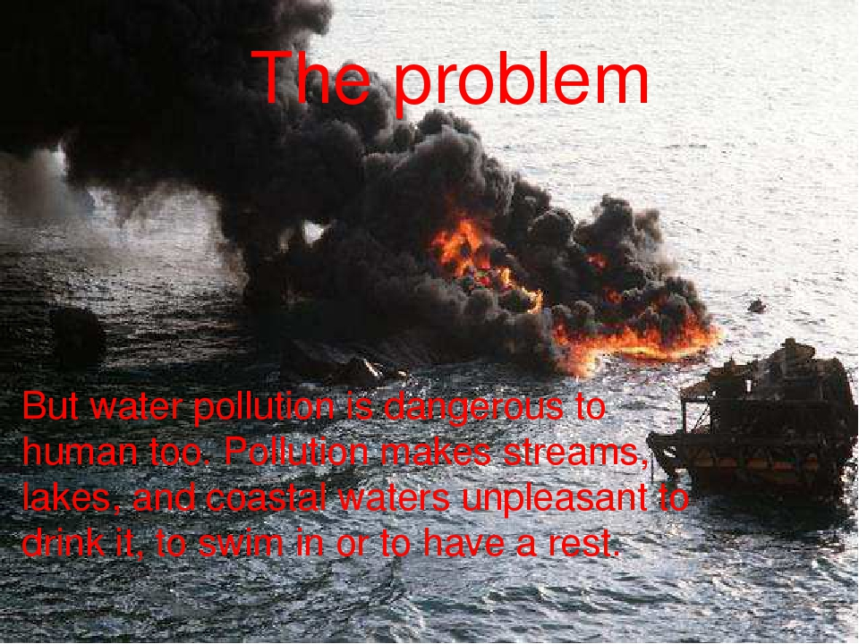 But water pollution is dangerous to human too. Pollution makes streams, lakes...