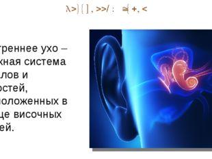 Внутренний отдел Внутреннее ухо – сложная система каналов и полостей, располо