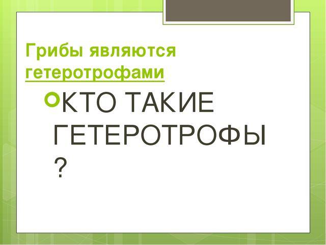 Грибы являются гетеротрофами КТО ТАКИЕ ГЕТЕРОТРОФЫ?