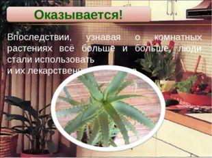 Впоследствии, узнавая о комнатных растениях всё больше и больше, люди стали и