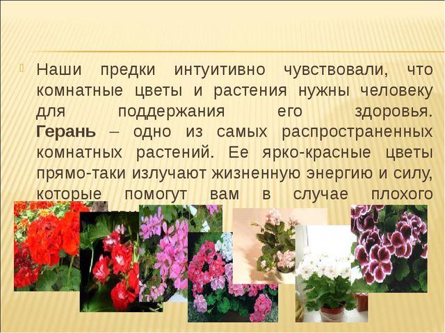 Наши предки интуитивно чувствовали, что комнатные цветы и растения нужны чело...