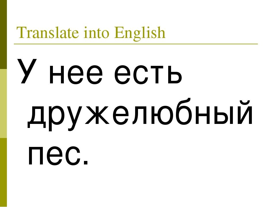 Translate into English У нее есть дружелюбный пес.