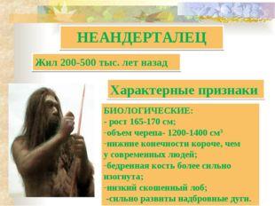 НЕАНДЕРТАЛЕЦ БИОЛОГИЧЕСКИЕ: - рост 165-170 см; объем черепа- 1200-1400 см3 ни