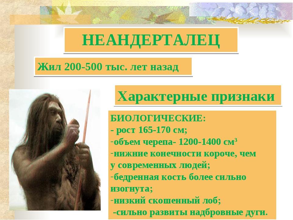 НЕАНДЕРТАЛЕЦ БИОЛОГИЧЕСКИЕ: - рост 165-170 см; объем черепа- 1200-1400 см3 ни...