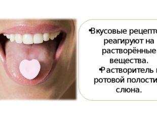 Вкусовые рецепторы реагируют на растворённые вещества. Растворитель в ротовой