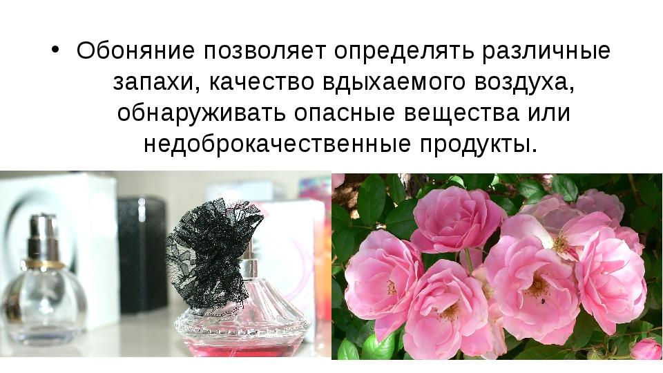 Обоняние позволяет определять различные запахи, качество вдыхаемого воздуха,...