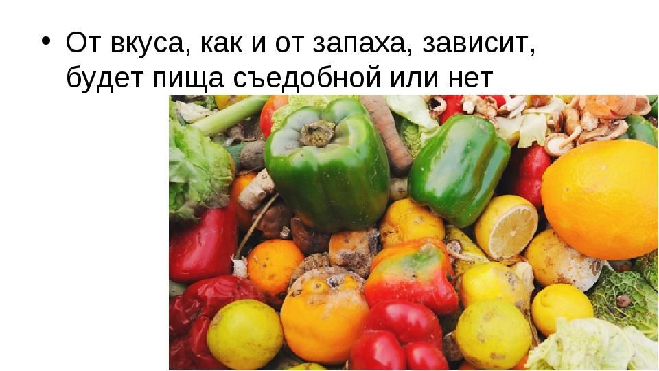 От вкуса, как и от запаха, зависит, будет пища съедобной или нет