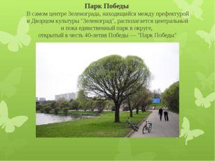 Парк Победы В самом центре Зеленограда, находящийся между префектурой и Двор
