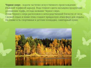 Черное озеро - водоем частично искусственного происхождения (бывший торфяной