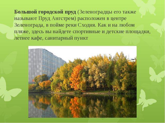 Большой городской пруд (Зеленоградцы его также называют Пруд Ангстрем) распол...