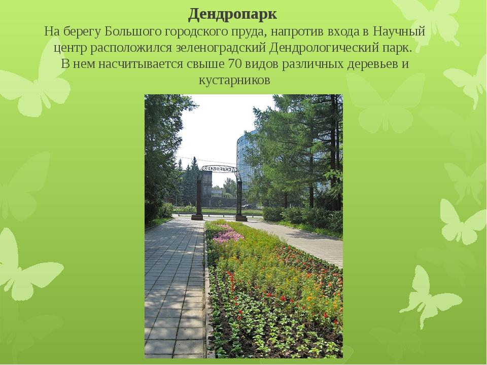 Дендропарк На берегу Большого городского пруда, напротив входа в Научный цен...