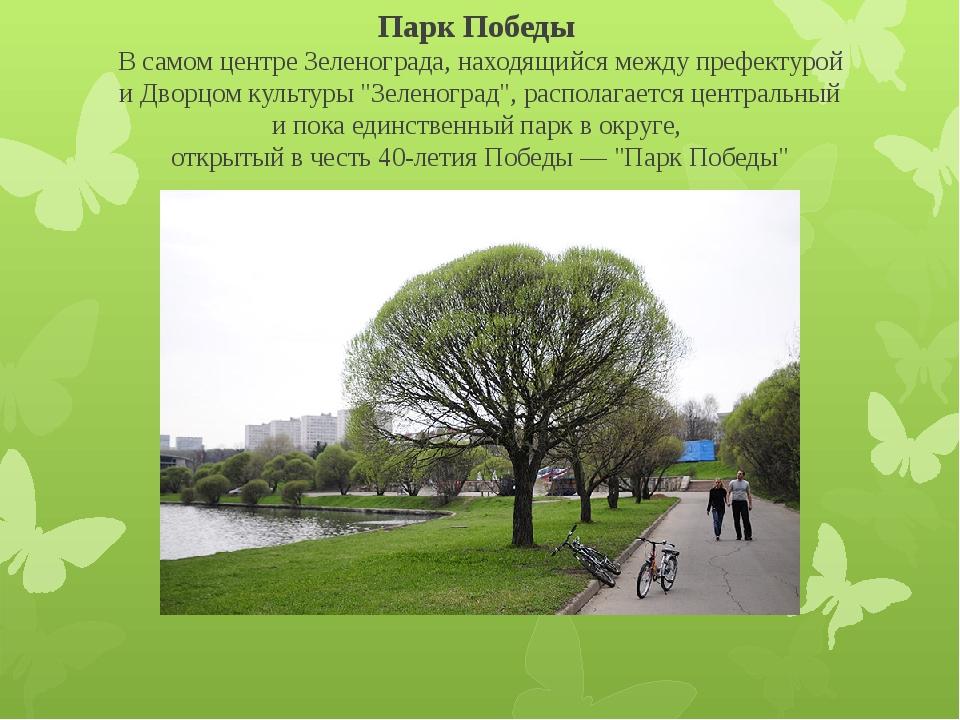 Парк Победы В самом центре Зеленограда, находящийся между префектурой и Двор...